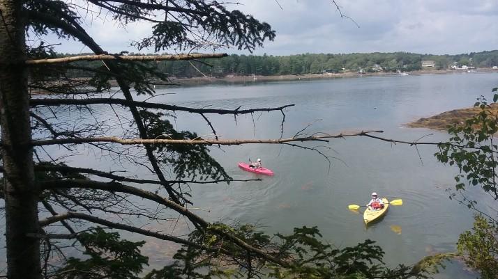 kayakss